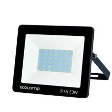 Прожектор Ecolamp 50Вт 6500K 4500Лм